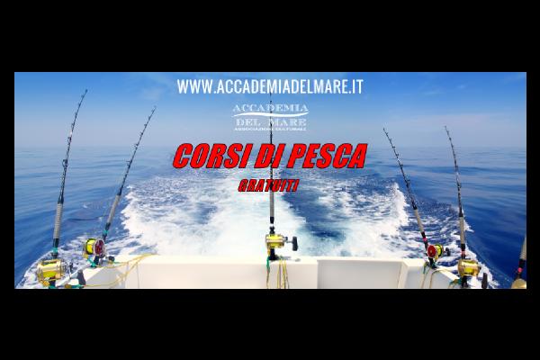 portfolio: Copertina Facebook Accademia del Mare